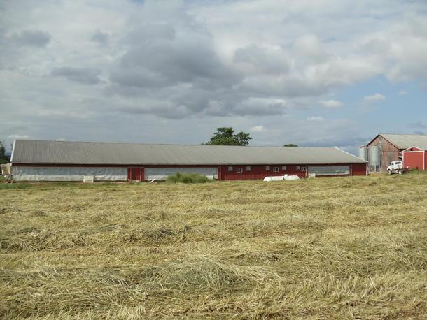 Pflegor Farm
